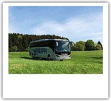 Bus auf Wiese im Vogelsberg